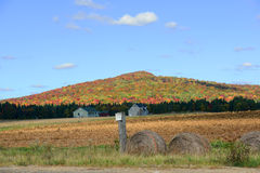 Adrondack Mountains in Fall, New York, USA Stock Photography