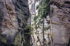 Adrspach teplice岩石 库存图片