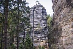 Adrspach teplice岩石 免版税库存照片