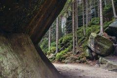 Adrspach teplice岩石 免版税图库摄影