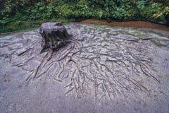 Adrspach teplice skały Obraz Royalty Free