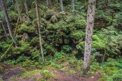 Adrspach teplice skały Zdjęcie Royalty Free