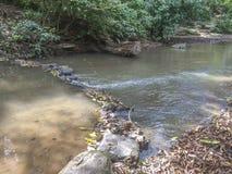 Aduana-Flusswald-Aduana-Stadt, Managua Lizenzfreie Stockfotografie