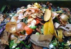 Adubo/Biowaste Foto de Stock Royalty Free