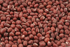 Aduki bean background Royalty Free Stock Photography