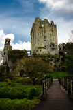 Adular o castelo Imagem de Stock