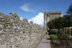 Adular o castelo Foto de Stock