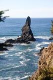 Adulazione del capo, punta di nord-ovest di U.S.A., penisola olimpica Fotografia Stock Libera da Diritti