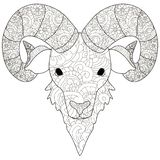 Adult antistress coloring head of a ram pattern, astrakhan. Illustration of black lines doodle, white background. Adult antistress coloring head of a ram pattern royalty free illustration