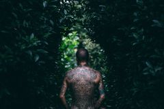 Adult, Art, Back View, Bald, Dark Royalty Free Stock Images
