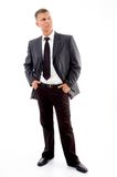 adult boss handsome standing Στοκ Φωτογραφίες