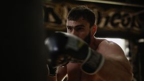 Adult boxer in black boxing gloves hitting punching bag. Boxer training in gym stock footage