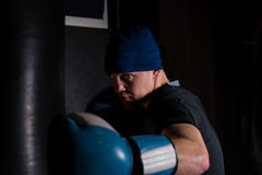 Adult boxer in boxing gloves training with boxing punching bag stock photography