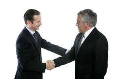 Adult businessman handshake expertise portrait Stock Photos