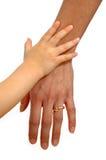 adult child hands στοκ εικόνα με δικαίωμα ελεύθερης χρήσης