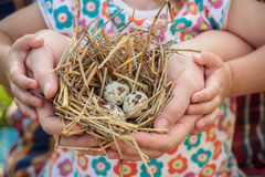 Adult and child holding nest in arms. Adult and child are holding nest in arms Stock Image
