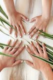 Adult and children`s hygienic manicure. Herbal design on short nails.Striped manicure of nature.Nail art.Adult and children`s hygienic manicure stock photo