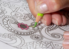 Adult coloring book and colorful pencils. Royalty Free Stock Images