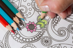 Adult coloring book and colorful pencils. Stock Photo