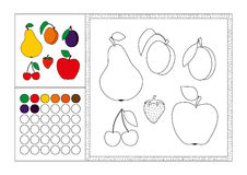 Adult coloring book page colored template, decorative frame and color swatch - vector black and white contour picture - fruit. Adult coloring book page with royalty free illustration