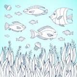 Adult coloring book page.  Kids coloring page with aquarium fishes. Kids coloring page with aquarium Royalty Free Stock Photos