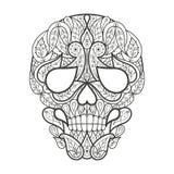 Adult coloring. Human skull. Stock Image