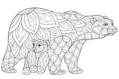 Adult coloring page  bears Royalty Free Stock Image