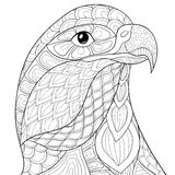 Adult coloring page eagle Stock Image