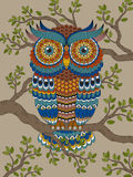 Adult coloring page with gorgeous owl Stock Image