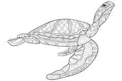 Adult coloring page turtle royalty free illustration