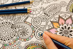 Adult colouring books with pencils, new stress relieving trend, mindfulness concept person coloring illustrative. Adult colouring books pencils, new stress stock photos