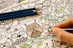 Free Adult Colouring Books With Pencils, New Stress Relieving Trend, Mindfulness Concept Person Coloring Illustrative Stock Photo - 66781080