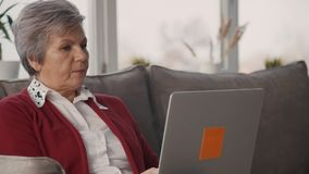 Adult confident woman is sitting on sofa and working by new digital technology laptop. White hair and casual wear senior is browsing information in network stock video footage