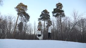 Couple with dog in winter forest. Adult couple with white dog in forest covered with snow stock video