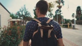 Alone man is walking on pedestrian road between bushes in suburban area in day. Adult dark haired man is strolling in cottage village in summer day, back view stock video footage