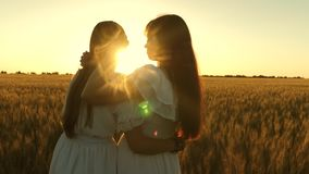 Adult daughter in arms of her mother in a field in the rays of the sun. Mom gently hugs daughter against backdrop of a stock video