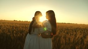 Adult daughter in arms of her mother in a field in the rays of the sun. mom strokes her daughter`s hair. Mom gently hugs stock footage