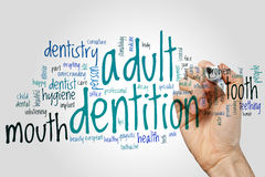 Adult dentition word cloud concept on grey background Royalty Free Stock Photo