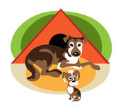 An adult dog and it puppy Royalty Free Stock Image