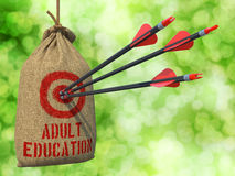 Adult Education - Arrows Hit in Red Target. Stock Image