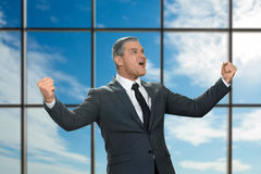 Adult emotional businessman in suit. Royalty Free Stock Photography
