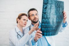 adult experienced doctors examining royalty free stock photography