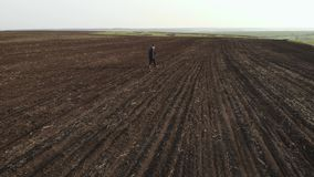 Adult farmer examining plowed field, preparing land for sowing. Seasonal agricultural works concept. Adult farmer examining plowed field, preparing land for stock footage