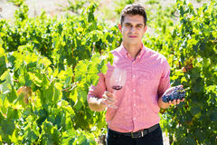 Adult farmer posing with wine and grape. At summertime Royalty Free Stock Images
