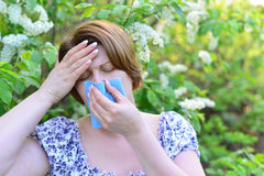 Adult female with allergic rhinitis about bird cherry blossoms Stock Photography