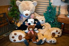 Adult female cuddles with a bunch of giant teddy bears stock images