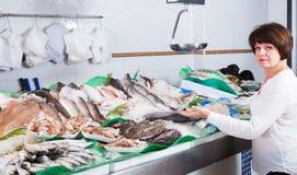 Adult female customer buying fish Stock Photos