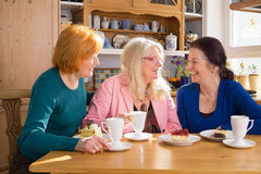 Adult Female Friends Having Snacks at the Table Stock Photography