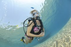 Adult Female scuba diver in bikini Stock Photography