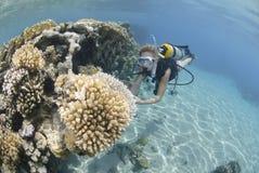 Adult Female Scuba Diver In Bikini Royalty Free Stock Photography